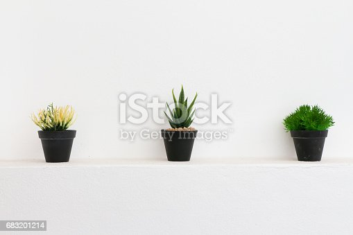 Plastic Cactus pots at white wall
