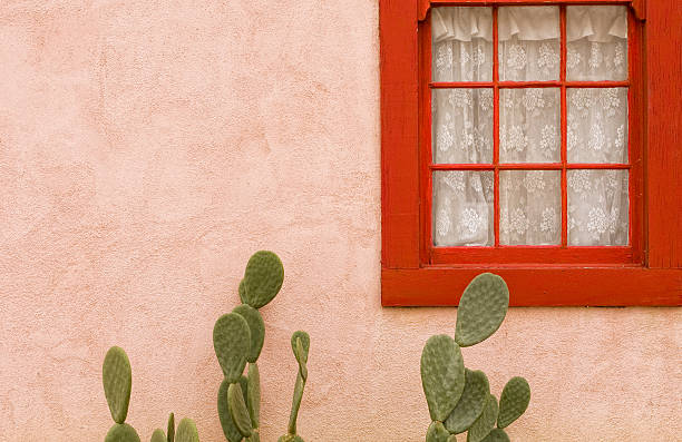 cactus la sérénade - adobe photos et images de collection