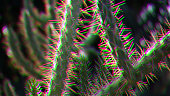 Cactus Sunlight Glitch Effect Summer Background Tropical Pattern Pattern Colorful Sunny Texture Close-up Macro Photography
