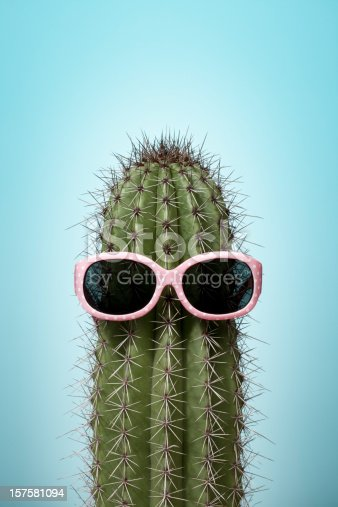 Close up photograph of a cactus with pink sunglasses isolated on blue background.