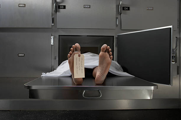 Cadaver on autopsy table, label tied to toe  dead stock pictures, royalty-free photos & images