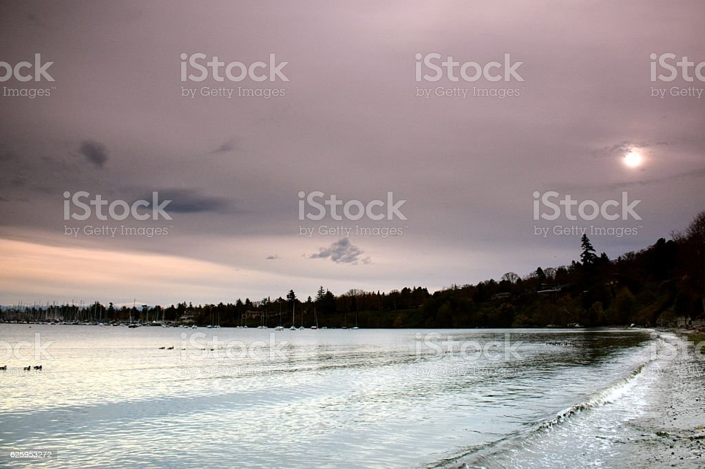 Cadboro Bay royalty-free stock photo