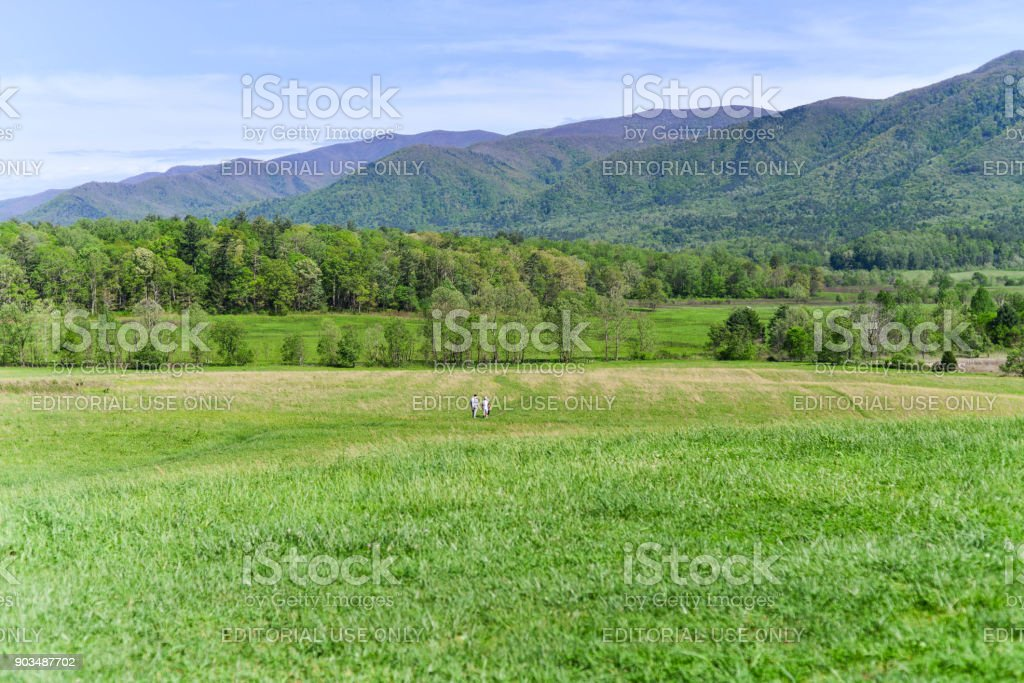 Cades Cove field and mountain stock photo