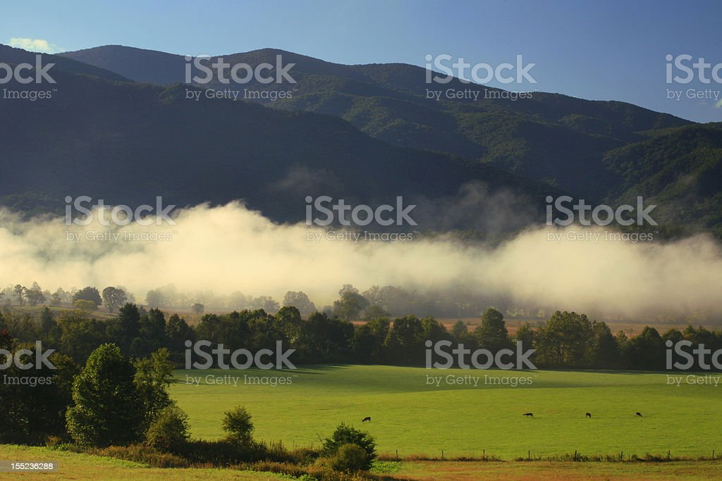 cades cove, great smoky mountains royalty-free stock photo