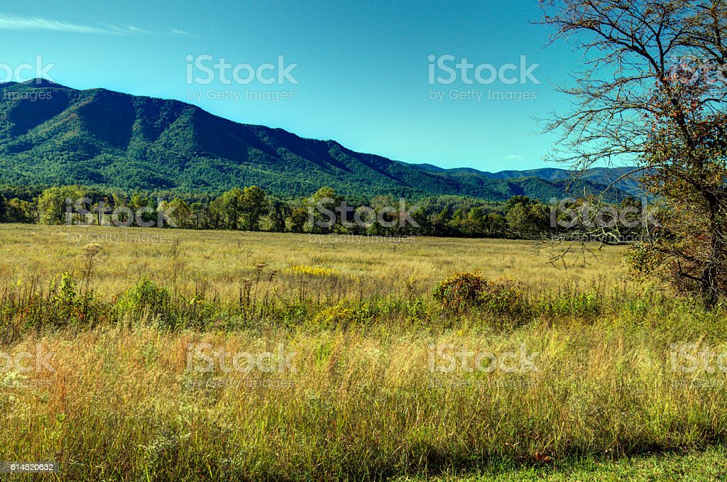 Cades Cove #101601 stock photo