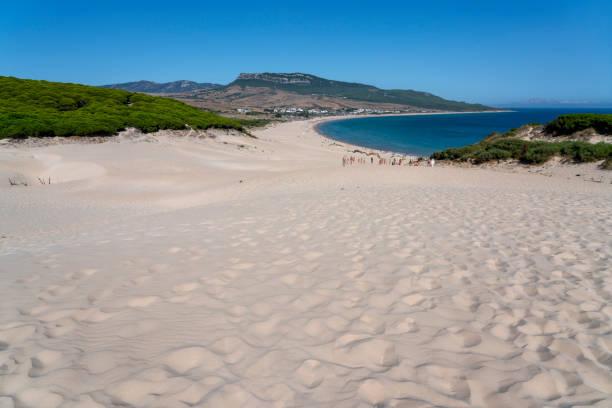 cadiz playa de bolonia duna - bolonia zdjęcia i obrazy z banku zdjęć