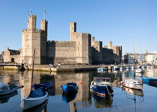 Caernarfon Castle and marina stock photo