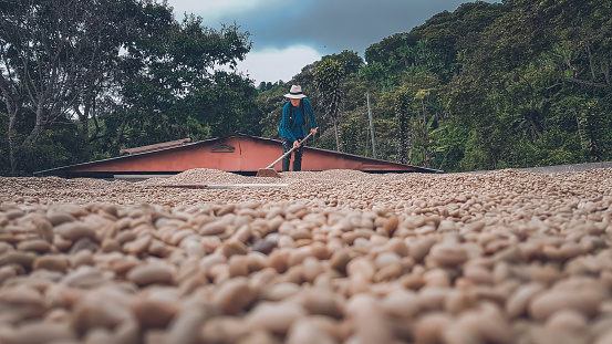 of the beautiful Colombian mountains taking the softest coffee in the world