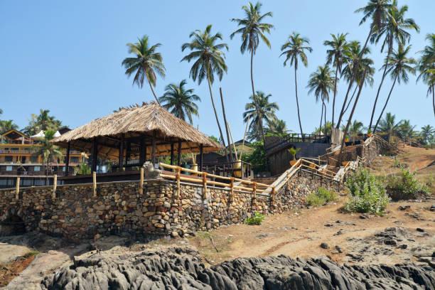 café sur la plage de vagator - jungle menu photos et images de collection