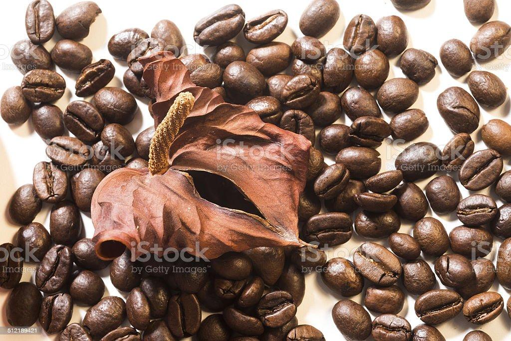 Caffè in chicci stock photo