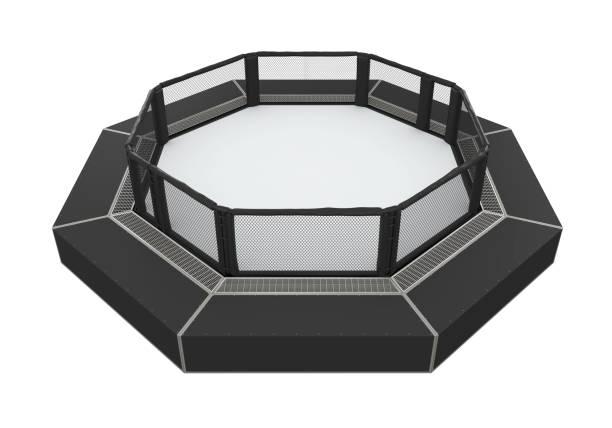 MMA Cage Arena stock photo