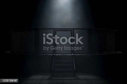 A spotlighting highlighting the door of a MMA fight cage arena dressed in black padding on a dark background - 3D render