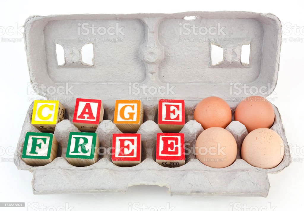 Cage Free royalty-free stock photo