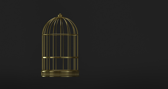 Cage gold in view front on black background metal vintage style prison concept symbol of freedom