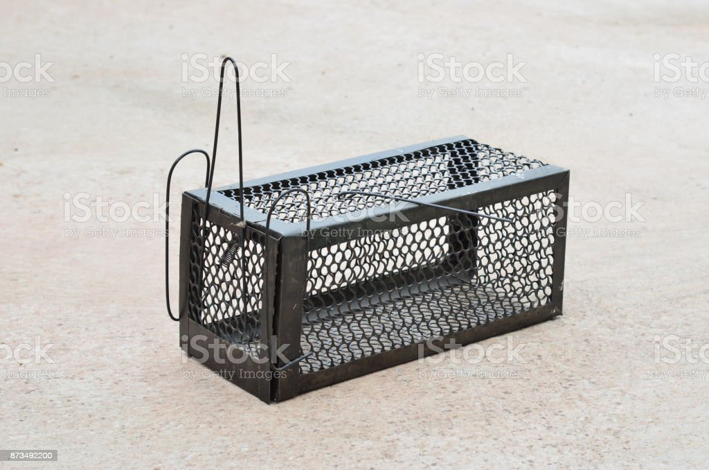 Cage mousetrap animal cage stock photo