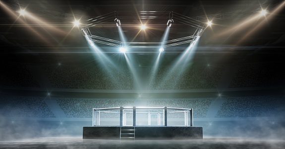 MMA cage night. Fighting Championship. Fight night. 3D render MMA arena. View of the arena by spotlights. Full tribune. Sport