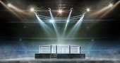 istock MMA cage night. Fighting Championship. Fight night. View of the arena by spotlights. Full tribune. 3D rendering 1271791405
