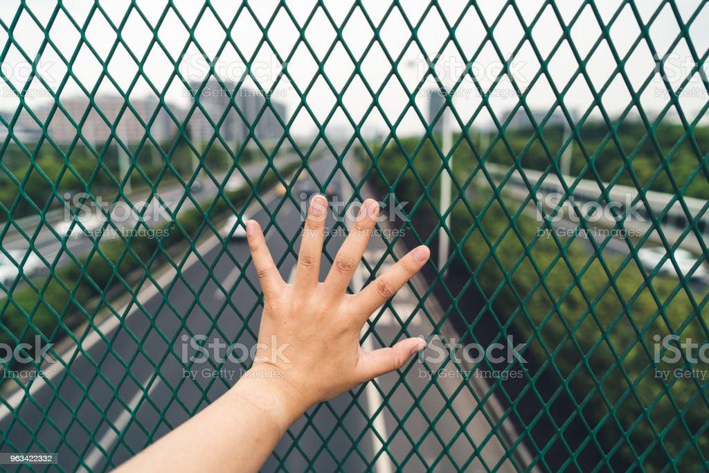 Une cage qui ne peuvent pas être échappée, une réalité qui ne peut pas être échappée - Photo de Acier libre de droits