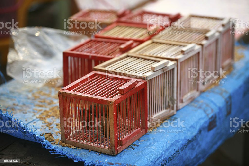 Cage the bird royalty-free stock photo