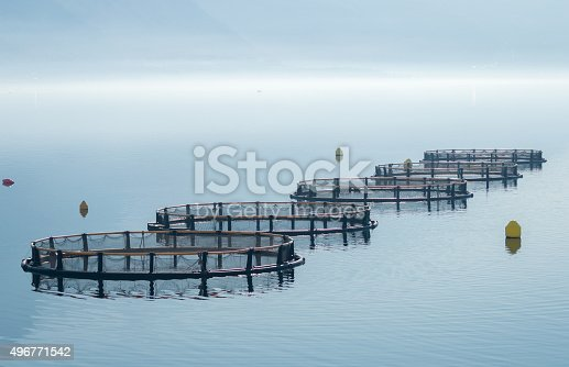 istock Cages for fish farming 496771542