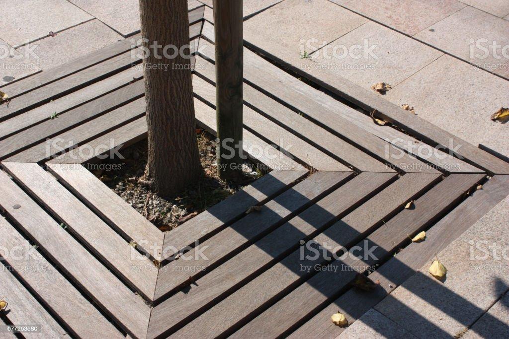 Caillebotis En Bois Exotique Terrasse Carrelage Arbre Stock