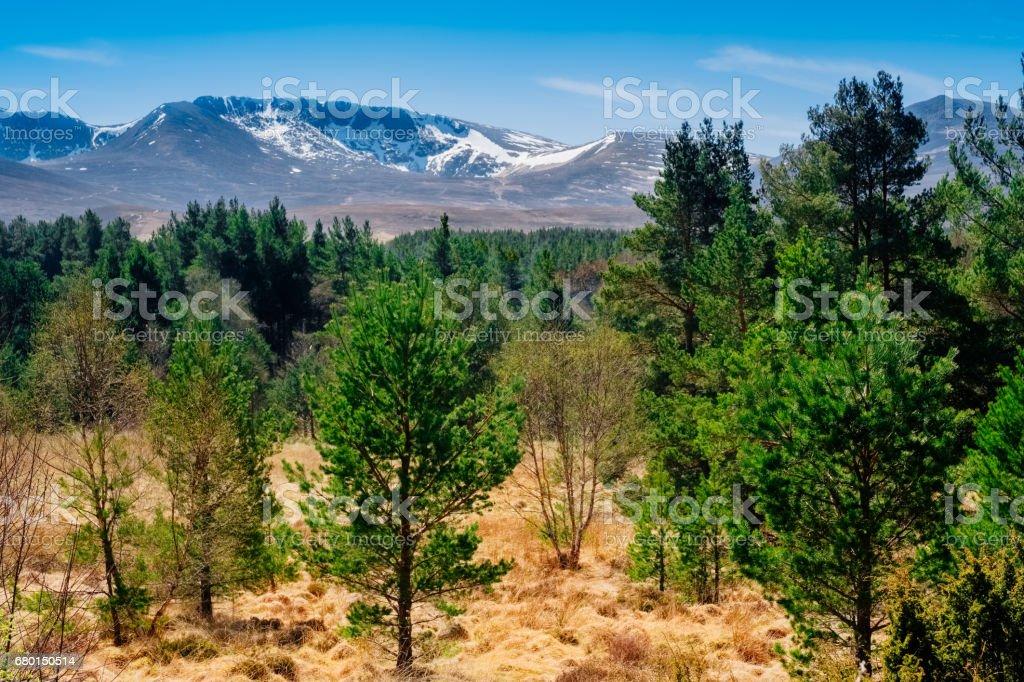 Cairngorm Mountains, Highland Region, Scotland stock photo
