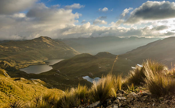 cajas national park - desolated stock pictures, royalty-free photos & images