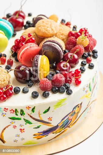 istock Cake with hand painted colorful birds and fresh berries 810853392