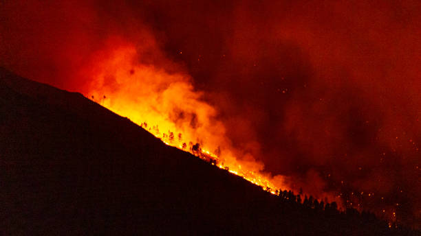 Cal Wood Fire Burning Forest and Structures stock photo