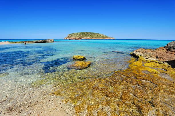 Cala Conta, Ibiza, Spanien – Foto