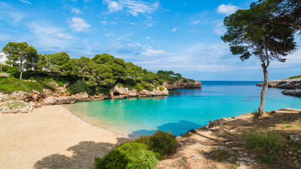 Cala Dor bay, Palma Mallorca Cala Dor bay at Cala d'Or city, Palma Mallorca Island, Spain bay of water stock pictures, royalty-free photos & images