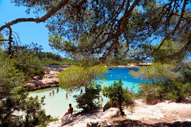 Cala Gracio beach Ibiza, Spain - June 12, 2017: People enjoying the summer, swimming and relaxing on the Cala Gracio beach. Balearic Islands. Spain new territories stock pictures, royalty-free photos & images