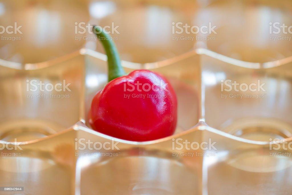 calabrese hot chili pepperr Lizenzfreies stock-foto