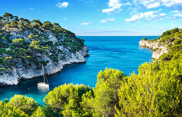 calanque  of Cassis Calanques of Port Pin in Cassis in France near Marseille provence alpes cote d'azur stock pictures, royalty-free photos & images