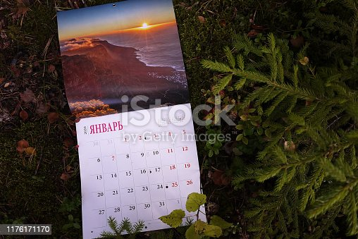 823410098 istock photo Calendar for 2020 1176171170