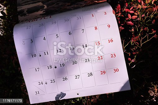 823410098 istock photo Calendar for 2020 1176171173