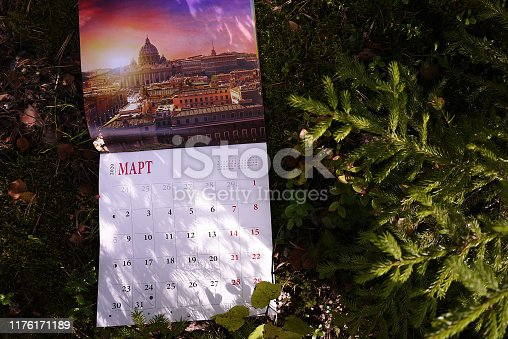 823410098 istock photo Calendar for 2020 1176171189