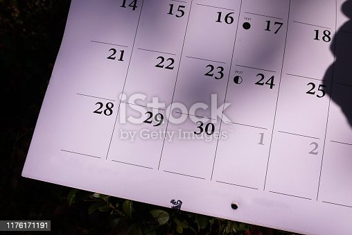 823410098 istock photo Calendar for 2020 1176171191