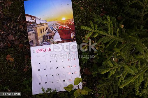 823410098 istock photo Calendar for 2020 1176171204