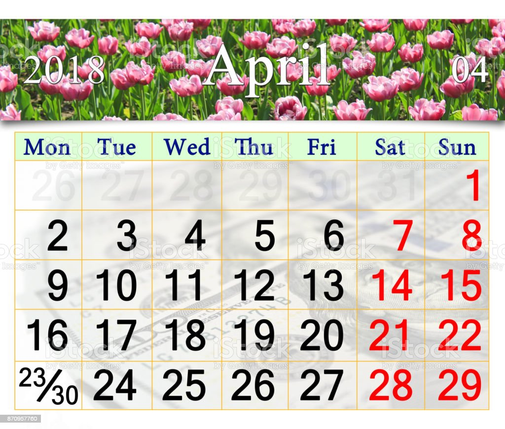 calendar for April 2018 with tulips on the flower-bed stock photo