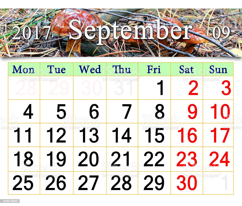 calendar for September 2016 with mushrooms of Suillus stock photo