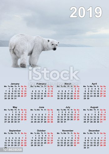istock Calendar for the year 2019. 1018639058