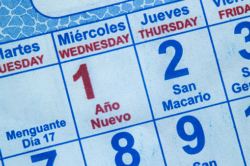 Calendar on the new year january 1st with lettering on spanish (año nuevo)