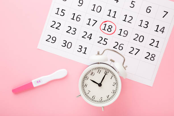 Calendar, test with two stripes and white alarm clock on pastel pink table background. Positive result. Pregnancy time beginning. Closeup. Top down view. stock photo