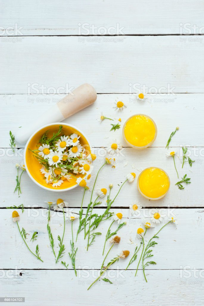 Calendula cream stock photo