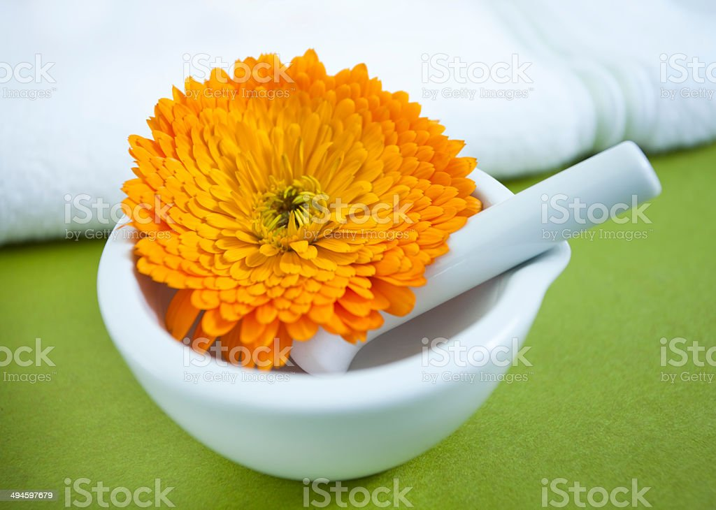 Calendula flower in mortar and pestle royalty-free stock photo