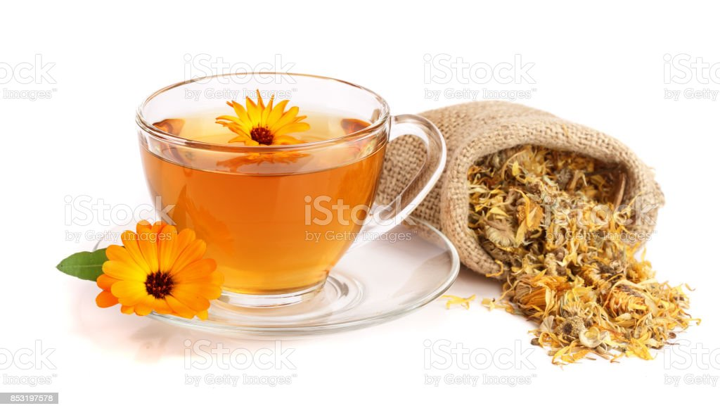 Calendula tea with fresh and dried flowers isolated on white background stock photo