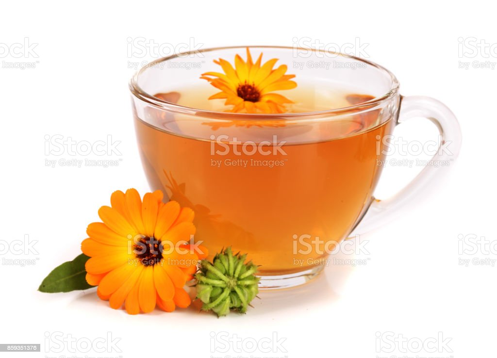 Calendula tea with fresh flowers isolated on white background stock photo