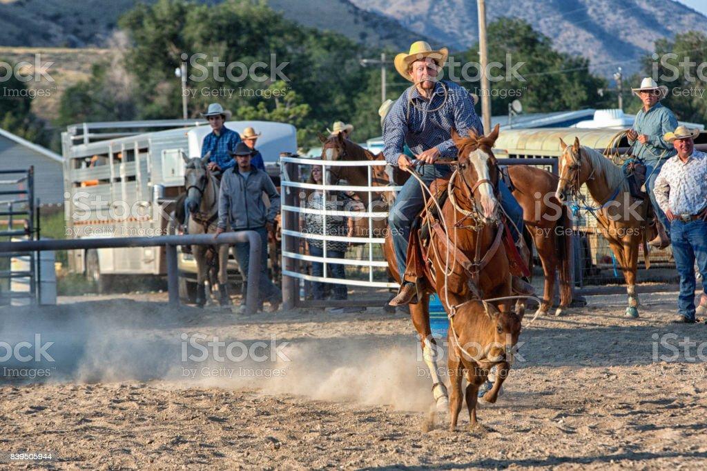 Sluts in Rodeo