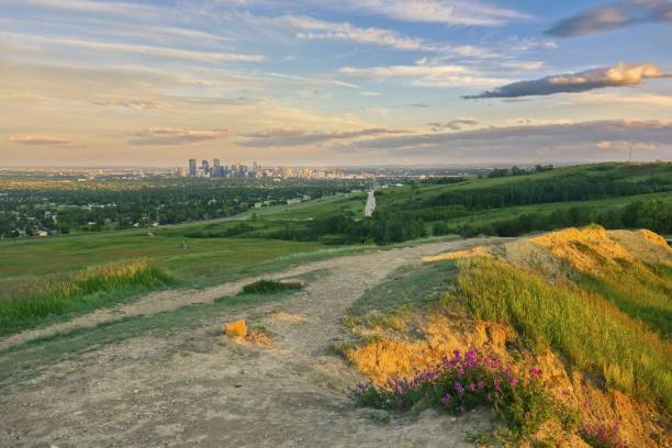 Calgary Downtown and Scenic Sunset Sky from Nose Hill Urban Park stock photo